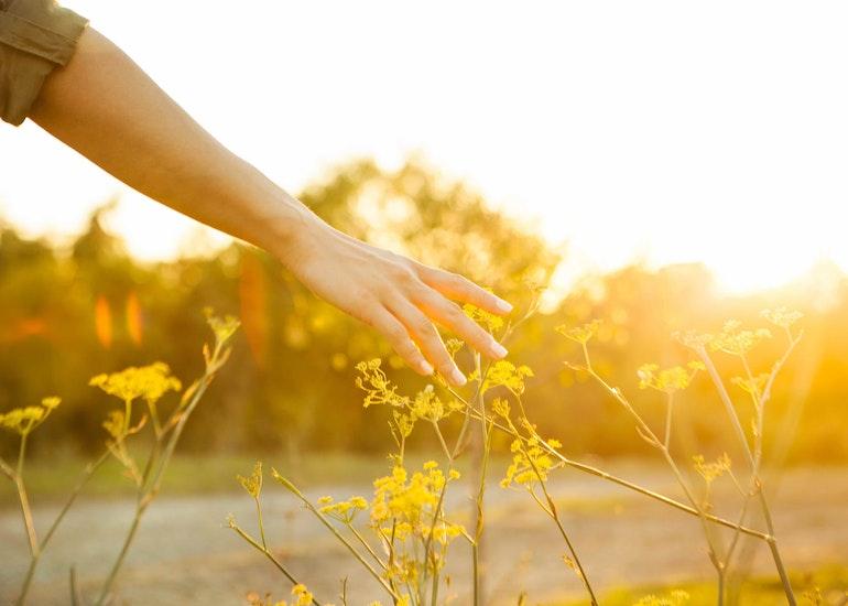Engagement pour la nature