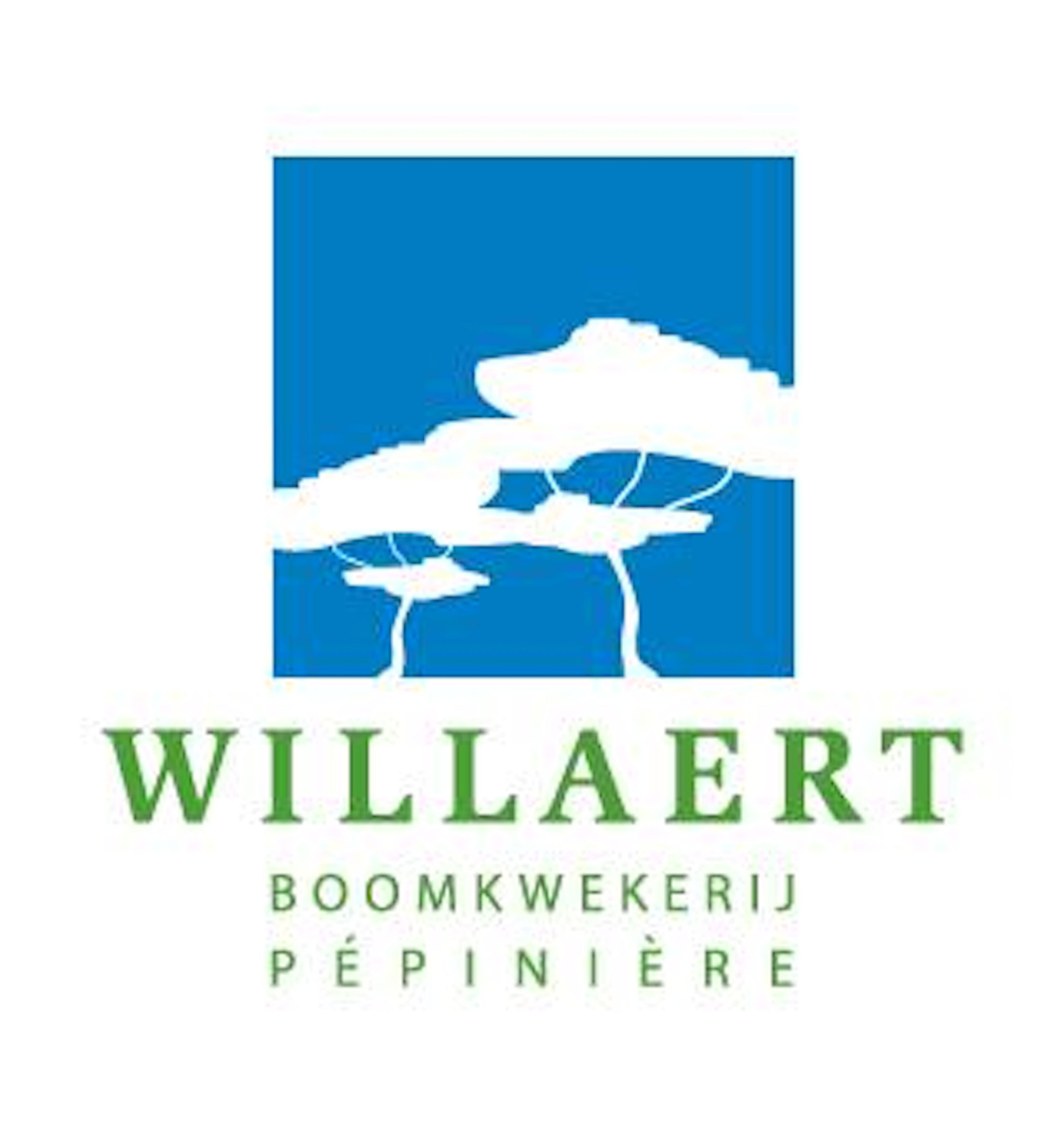 Boomkwekerij Willaert logo