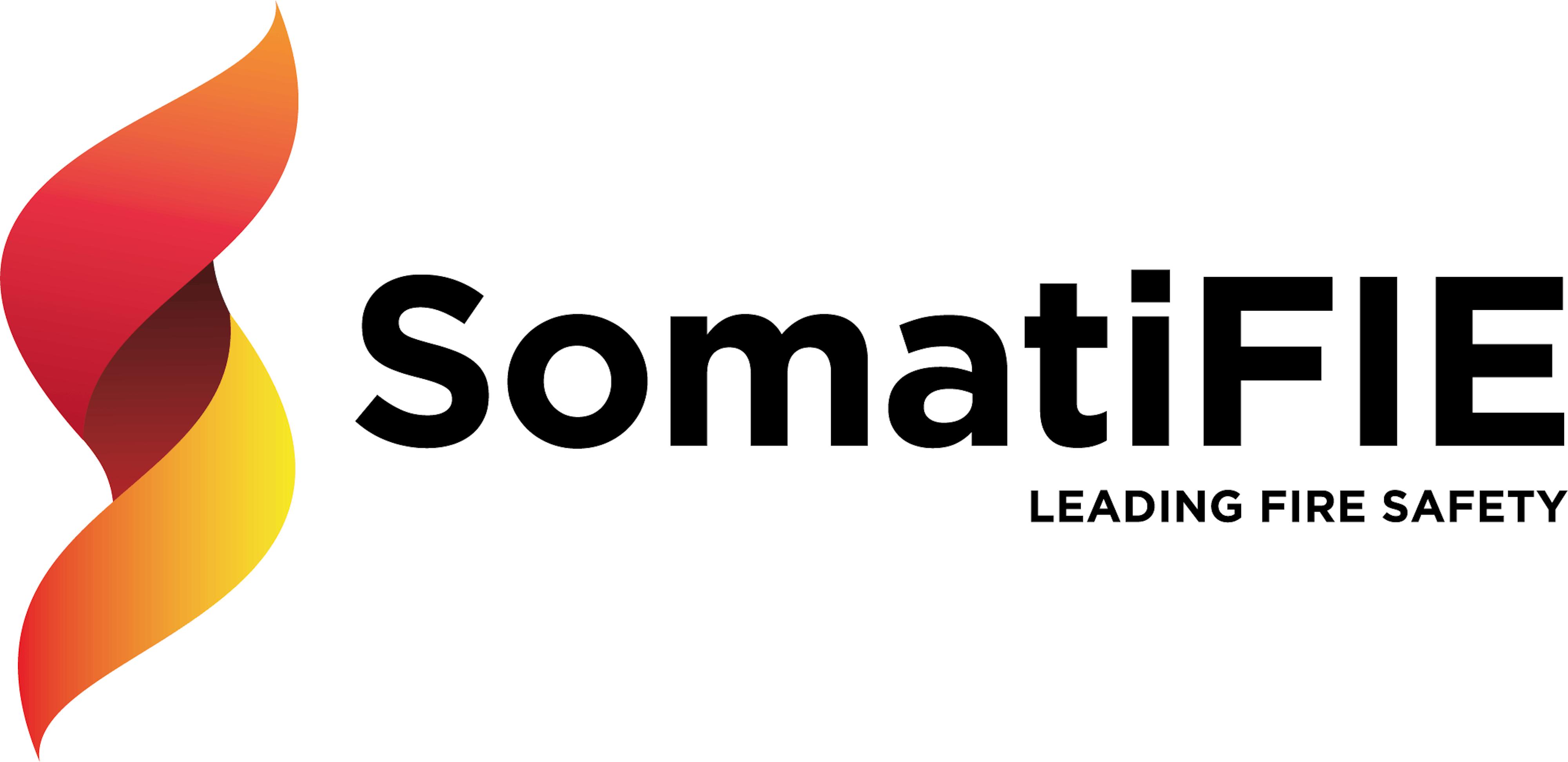 SomatiFIE logo