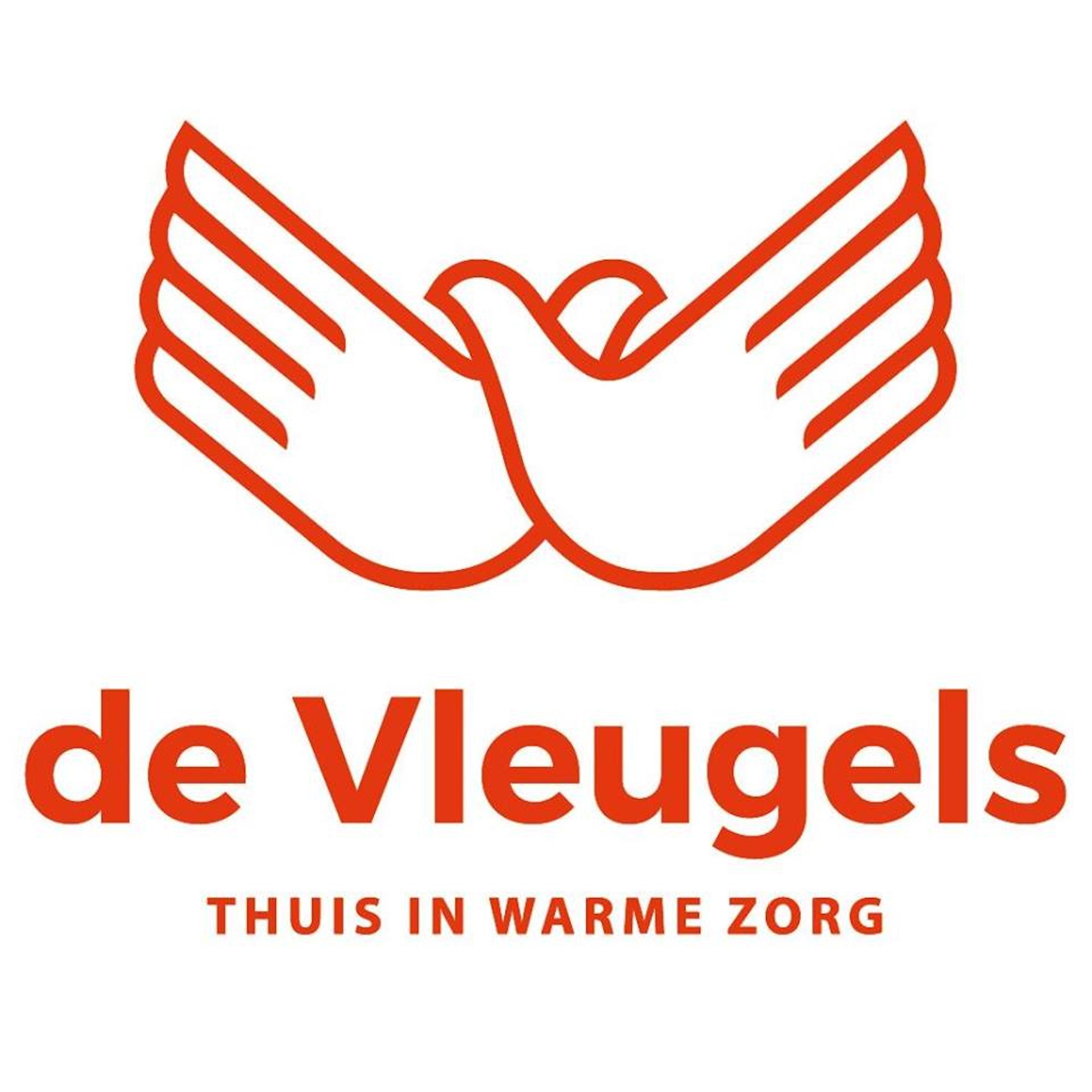 De vleugels logo